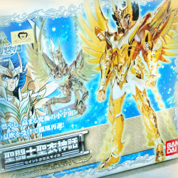 Chevaliers Du Zodiaque - GOD CLOTH - IKKI PHOENIX 2010 - BANDAI - Club Dorothée - Saint Seiya - Myth Cloth